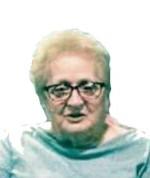 Ann Volkman